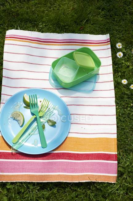 A cleared plate and picnic crockery on a striped cloth — Stock Photo