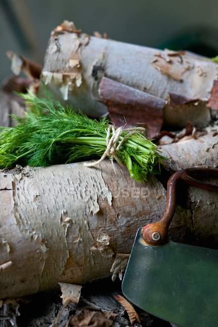 Un manojo de eneldo fresco con una picadora de hierba vintage sobre una pila de madera - foto de stock