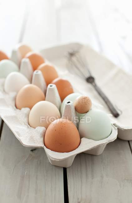 Variety of Fresh Eggs — Stock Photo