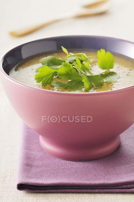 Mulligatawny soup in purple bowl — Stock Photo
