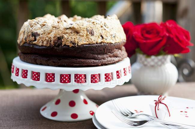 Шоколадный Фундук Безе Торт — стоковое фото