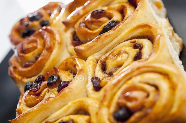Closeup view of raisin and cranberry whirls — Stock Photo