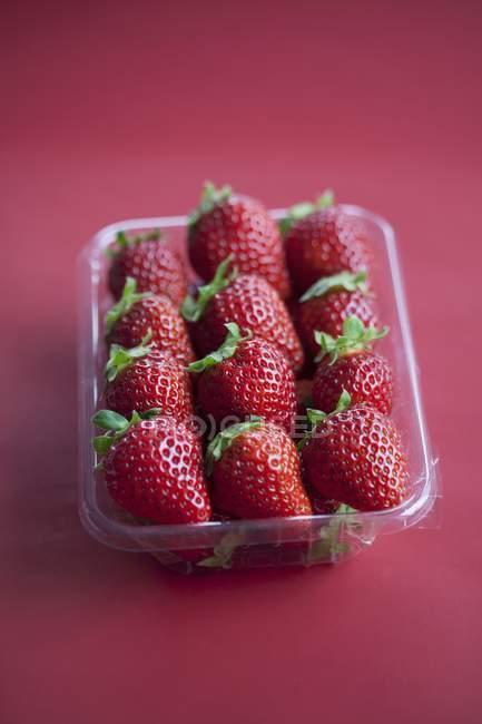 Strawberries in plastic punnet — Stock Photo