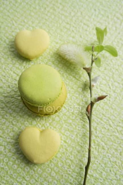 Миндальное печенье зеленый лайм — стоковое фото
