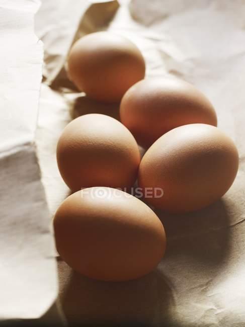 Fresh brown eggs — Stock Photo