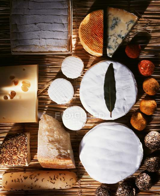 Lots of different cheese — Stock Photo