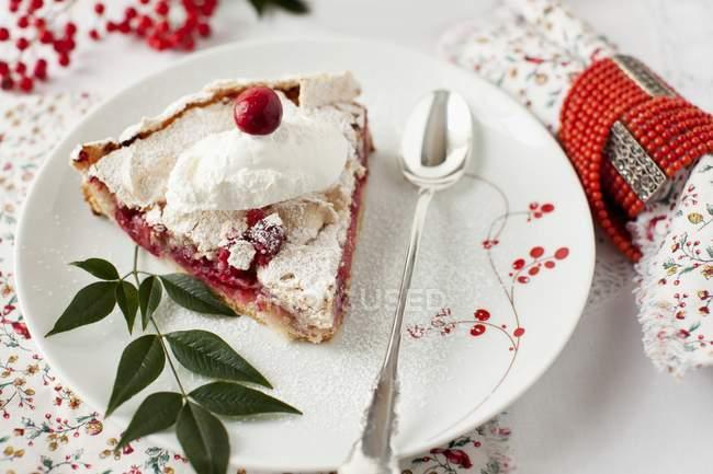 Ломтик клюквенный безе пирог — стоковое фото