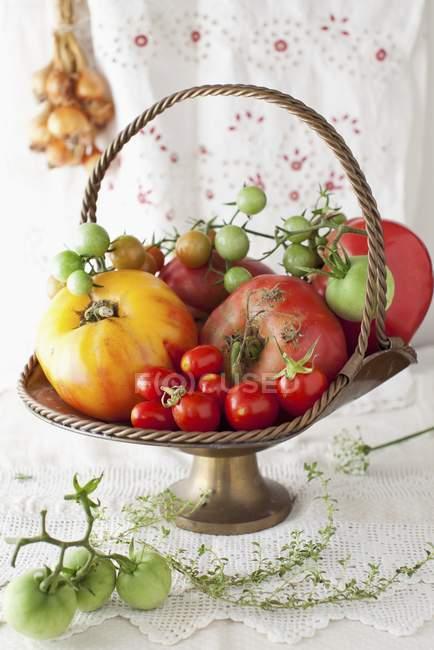 Tomates frescos en canasta de Metal - foto de stock