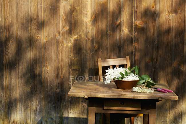 Daytime view of fresh Elderflowers in bowl on rustic wooden table — Stock Photo