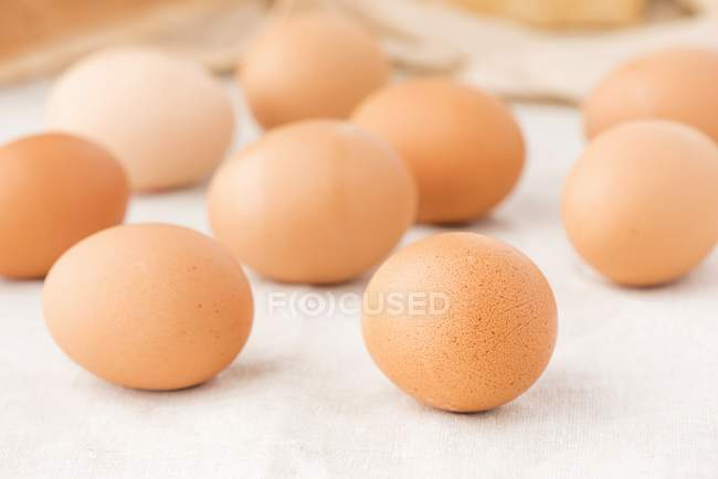 Fresh brown eggs — Stock Photo
