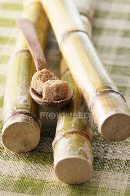 Closeup visão de cubos de açúcar bruto em uma colher de madeira e cana de açúcar — Fotografia de Stock