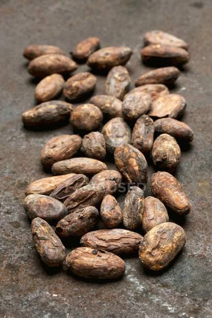 Granos de cacao orgánicos - foto de stock