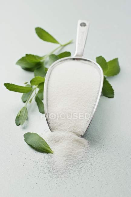 Closeup view of Stevia leaves and powder in shovel — Stock Photo