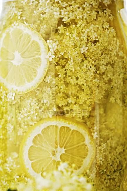 Succo di frutta fatto in casa — Foto stock