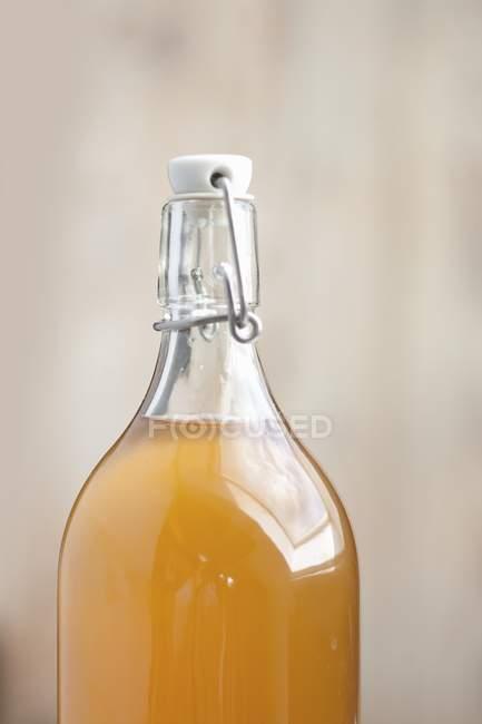 Caseiro sabugueiro cordial em uma garrafa com rolha — Fotografia de Stock