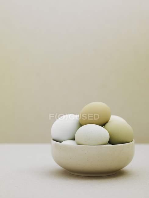 Утка яйца в миску — стоковое фото