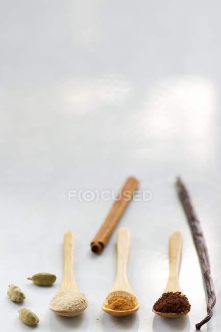 Cardamomo con vainilla y canela - foto de stock