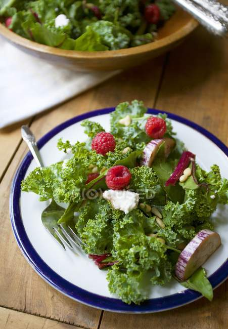 Closeup view of Lollo biondo lettuce with aubergines, raspberries and pine nuts — Stock Photo