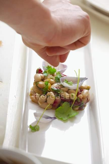 Hand, Fenchel Blatt auf Salat — Stockfoto