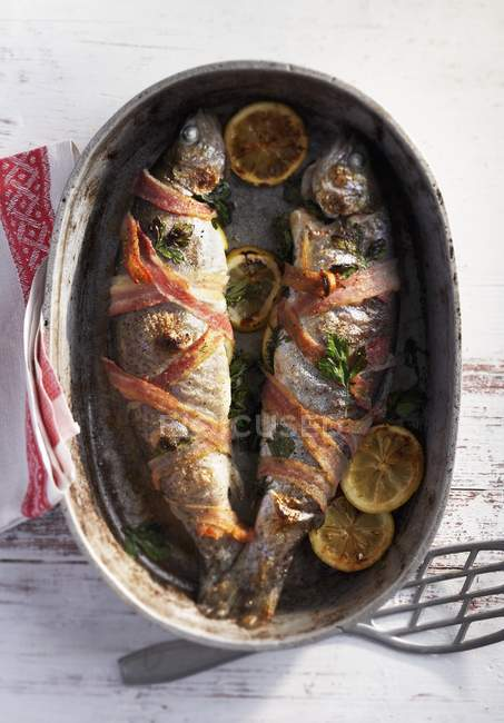 Trout wrapped in bacon in roasting tin — Stock Photo