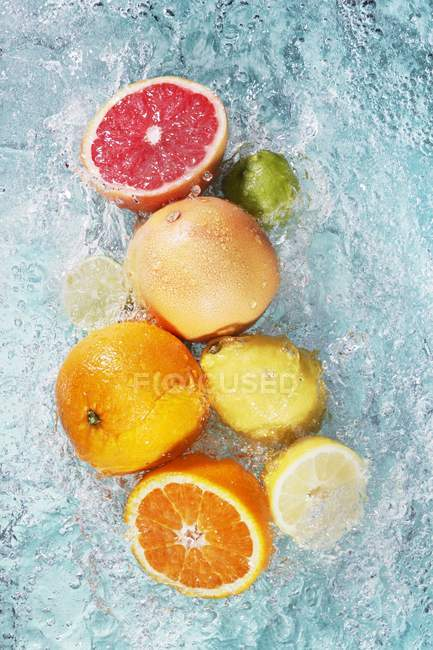 Assorted citrus fruits in water — Stock Photo