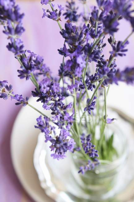 Lavender flowers in a glass of water — Stock Photo