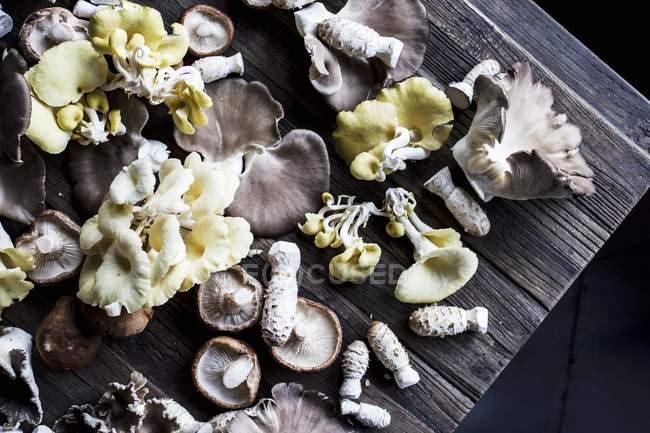 Vista superior de cogumelos variados em uma tábua de madeira rústica — Fotografia de Stock