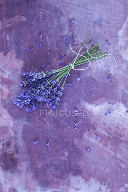 Вид сверху на кучу лаванды на фиолетовой поверхности — стоковое фото