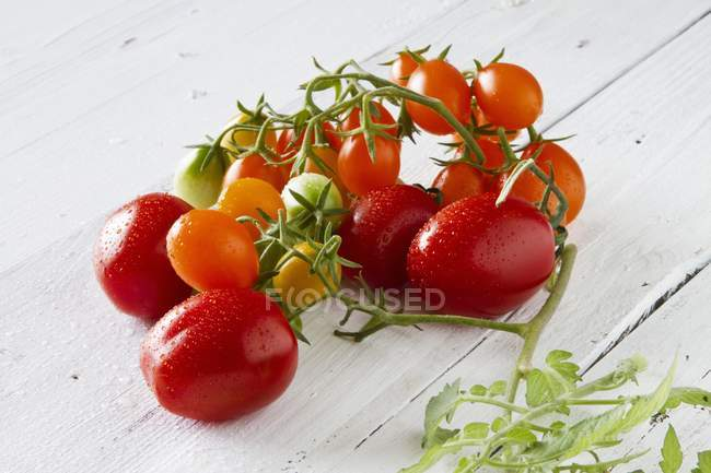 Fresh colorful tomatoes — Stock Photo