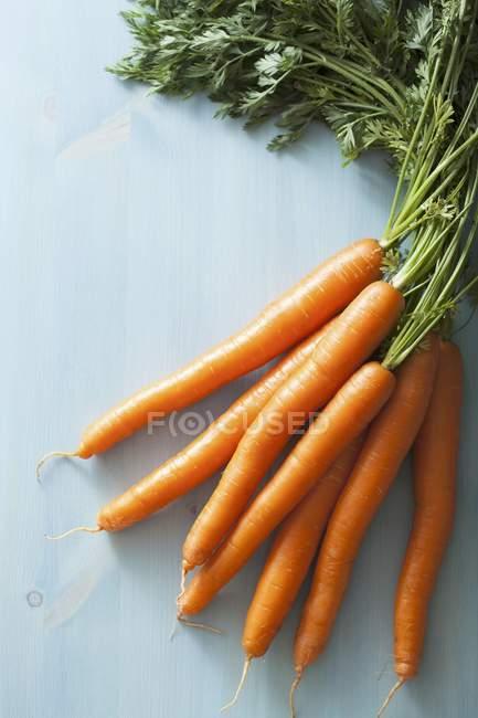 Fresh raw carrots — Stock Photo