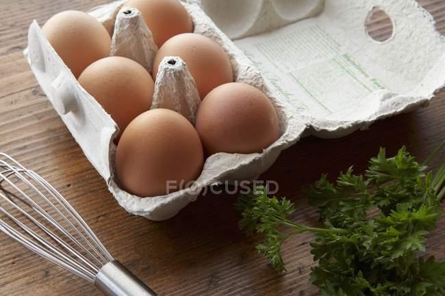Frische Eier und Petersilie — Stockfoto