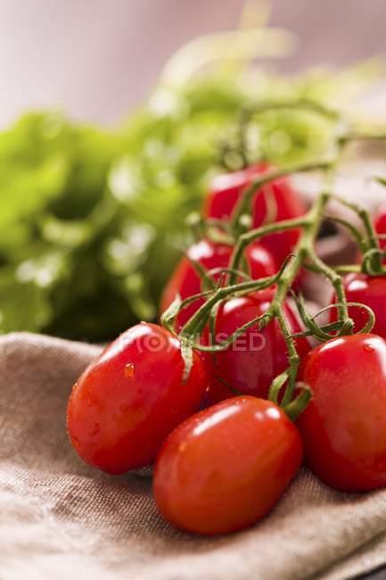 Red ripe Roma tomatoes — Stock Photo