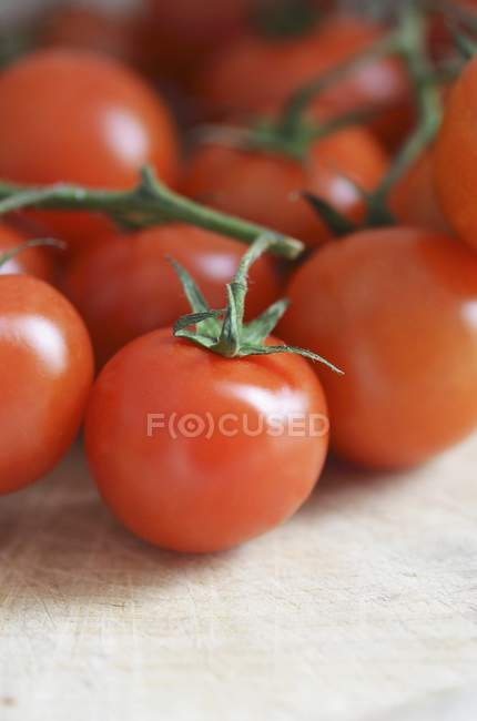 Fresh red vine tomatoes — Stock Photo