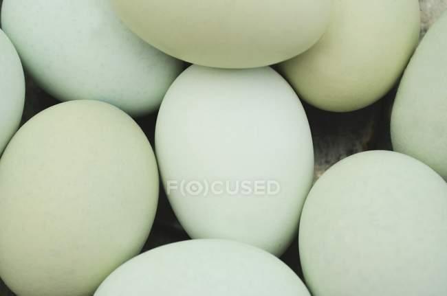 Vue rapprochée du tas d'œufs bleu pastel et vert — Photo de stock