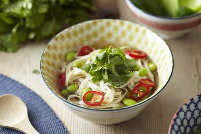 Sopa de macarrão com feijão de soja — Fotografia de Stock