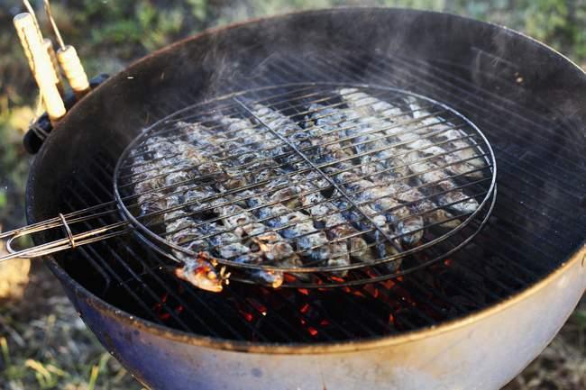 Жареные сардины на решетку Барбекю — стоковое фото