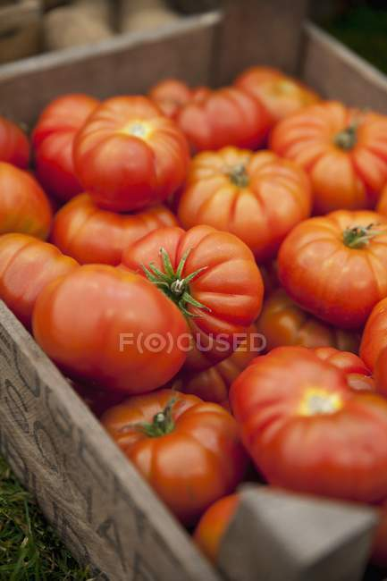 Tomatoes in wooden crate — Stock Photo