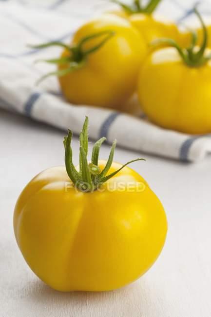 Pomodori gialli Golden Queen — Foto stock