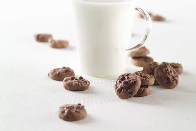 Biscotti al cioccolato doppio — Foto stock