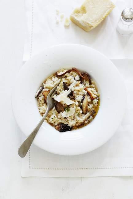 Risotto ai funghi con Parmigiano — Foto stock