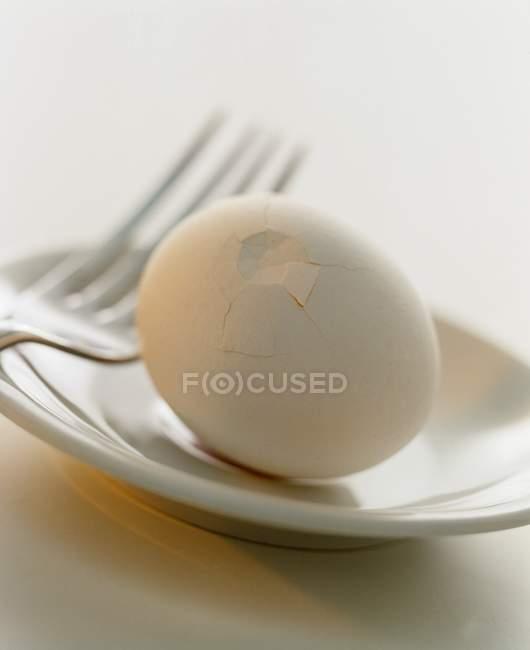 White boiled chicken egg — Stock Photo