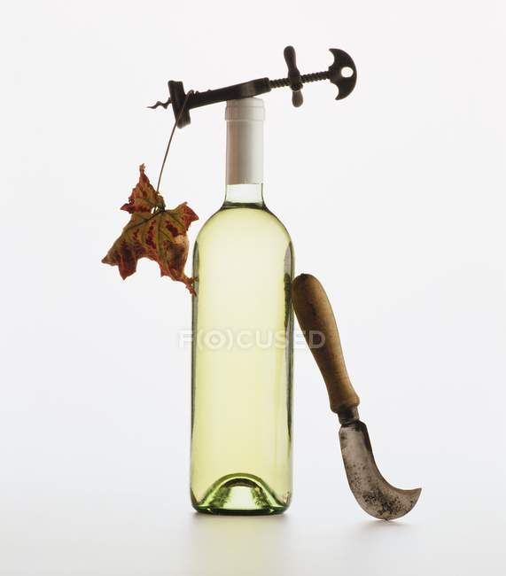 Bottle of white wine with corkscrew — Stock Photo
