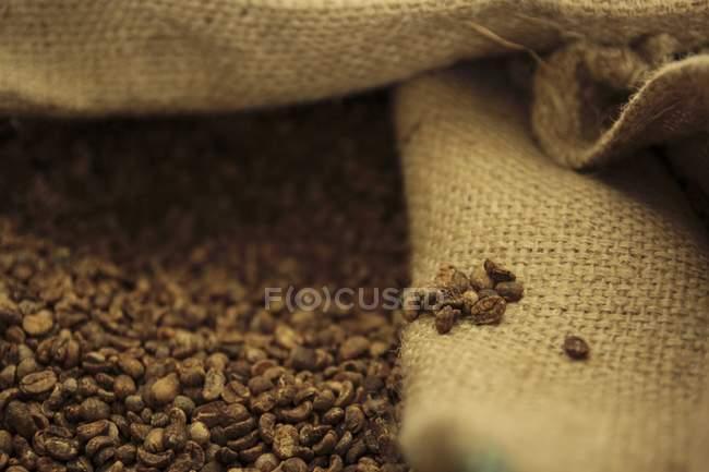 Granos de café tostados - foto de stock