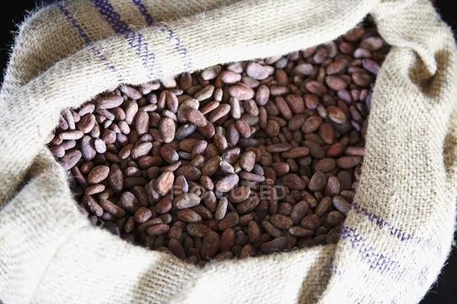 Granos de cacao en saco gunny - foto de stock