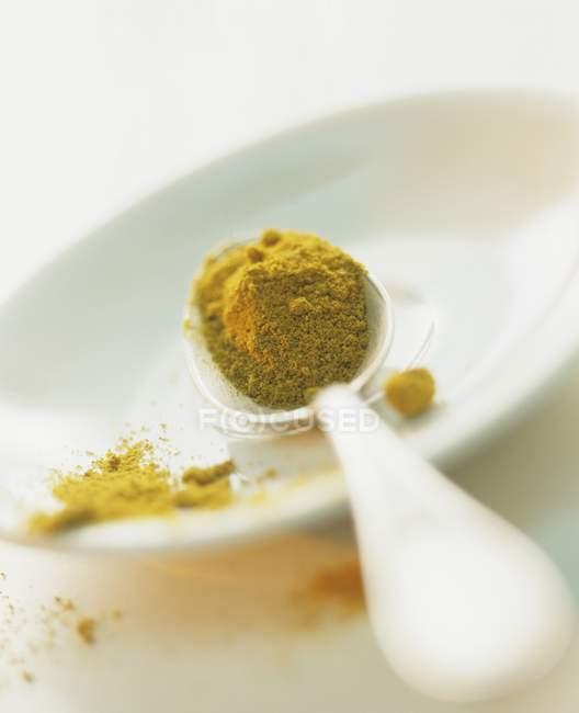 Cucchiaio di Curry di terra — Foto stock