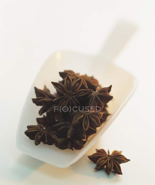 Star anise in a plastic scoop — Stock Photo