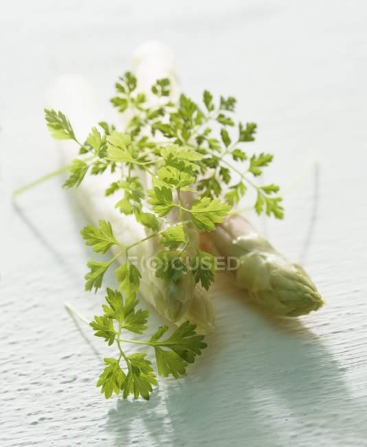 Asparagi bianchi e chervel fresco — Foto stock