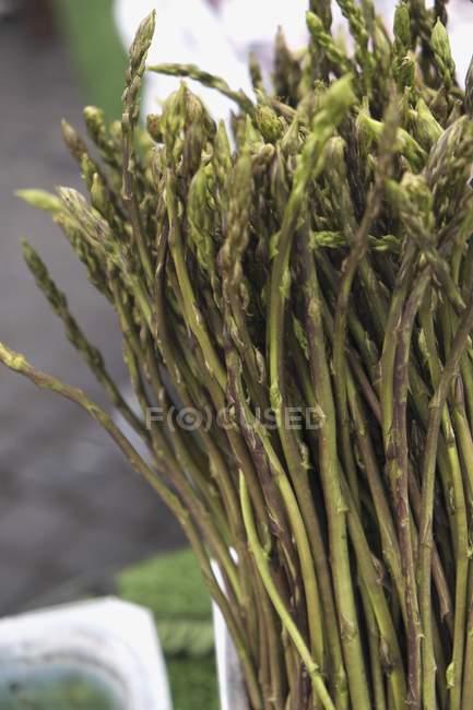 Asparagi verdi — Foto stock
