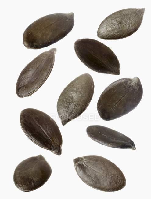 Varias semillas de calabaza - foto de stock