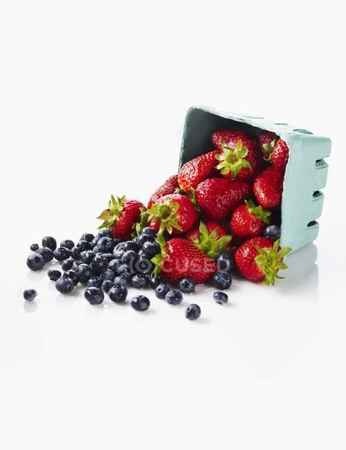 Fresas frescas y arándanos - foto de stock